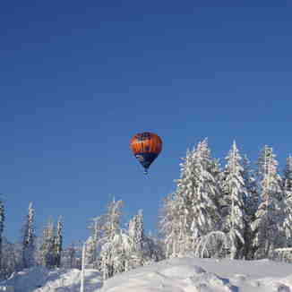 Baloons, Levi