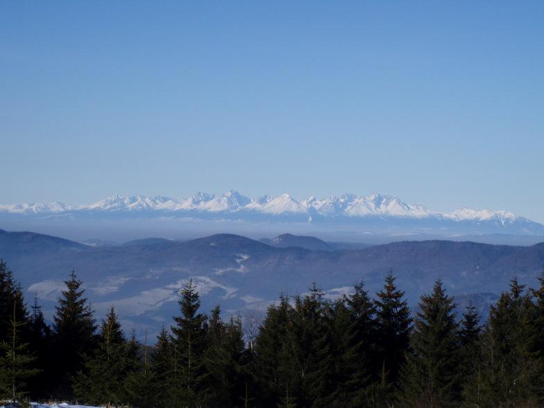 Panorama, Kojšovsků hoľu/Skipark Erika