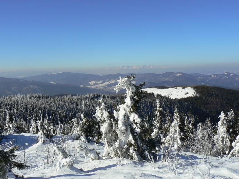 Kojšovsků hoľu/Skipark Erika snow