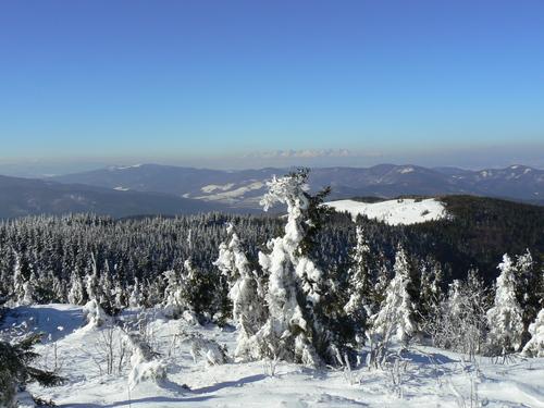 Kojšovsků hoľu/Skipark Erika  Guide de la station