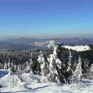 Nature, Kojšovsků hoľu/Skipark Erika