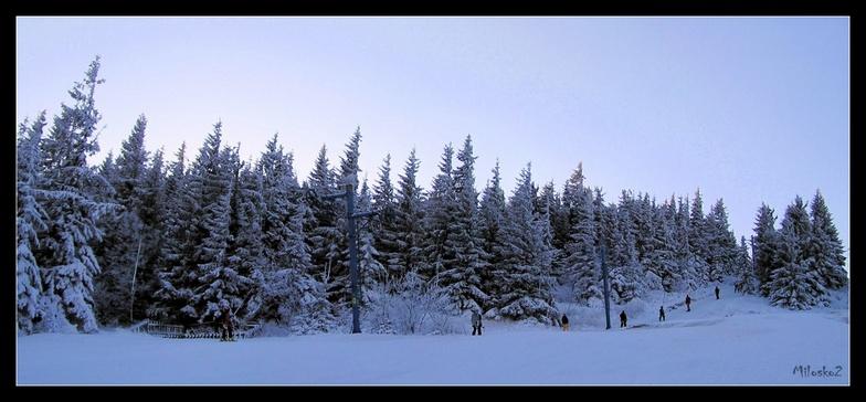 Skilift, Kojšovsků hoľu/Skipark Erika