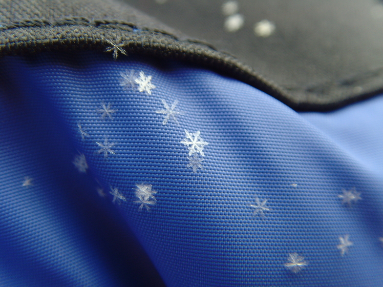 Perfect Snowflakes, Levi