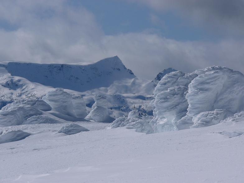 Mt. Albert Edward, Mount Washington