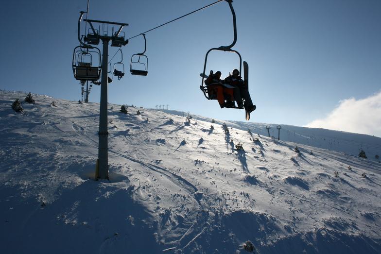 Seli snow
