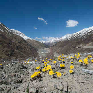 Spring in the San Berdardo Pass