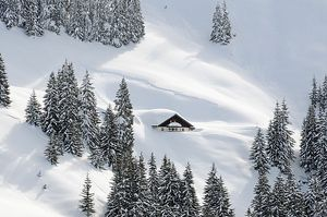 Deep snow covered hut in the Bichlalm region / Kitzbühel    photo