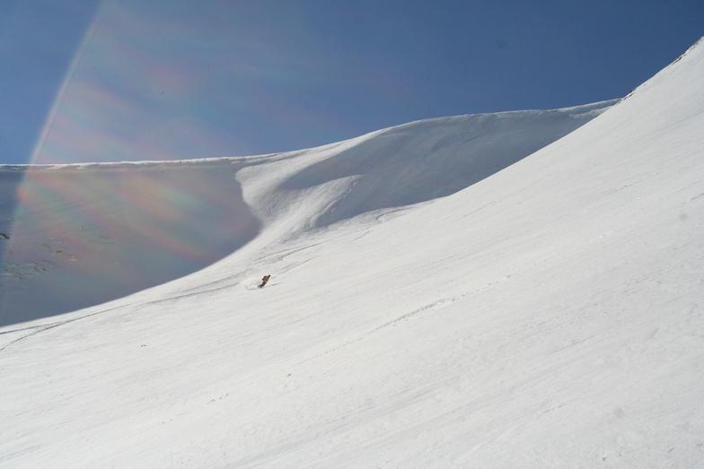Eskimo freeride - snowcat freeriding in Macedonia, Popova Shapka