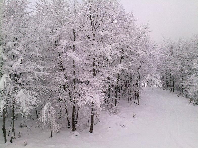 SNOW, 3-5 Pigadia