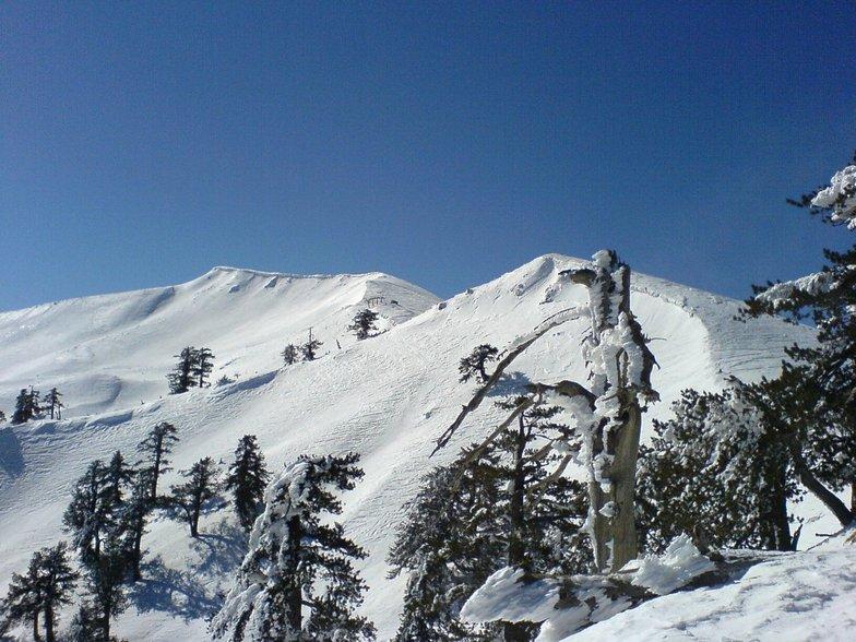 Vasilitsa Top of Mountain (2150m)
