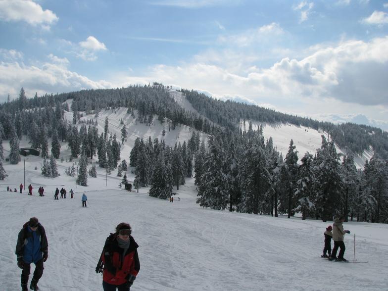 Resort view, Harghita Mădăraş