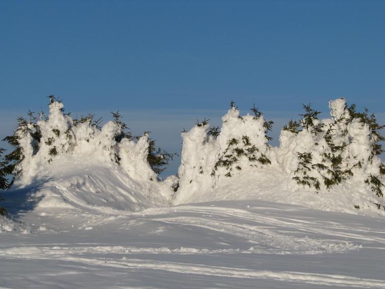 TONS of snow, Harghita Mădăraş