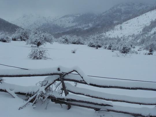 Snowy day, Kopanki - Pelister