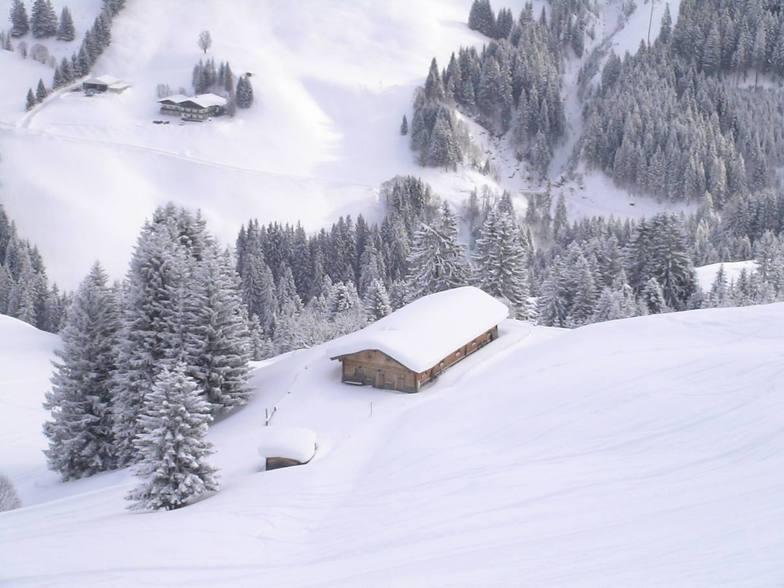 Zwölferkogel, Saalbach Hinterglemm
