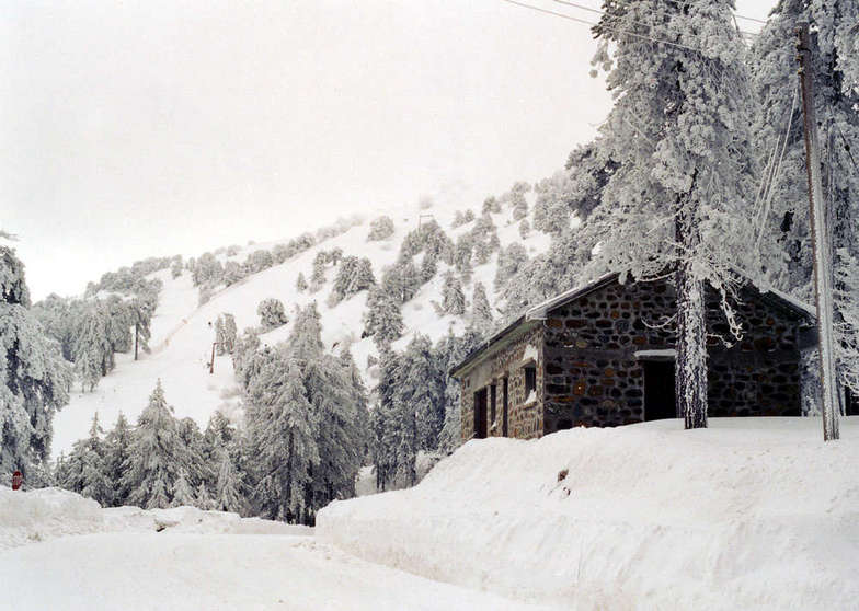 North Face ,Troodos , Cyprus, Mt Olympus