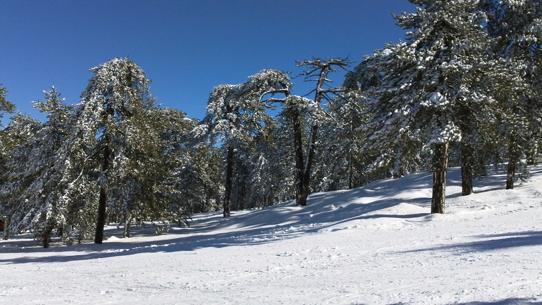 Mt Olympus snow