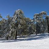 January 27 2011, Mt Olympus