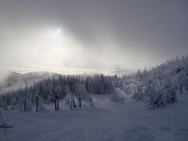 so much snow, Mt Baldy Ski Area