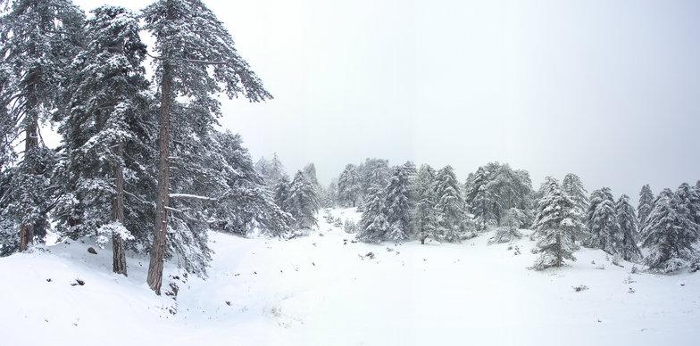 Vassilitsa, Vasilitsa