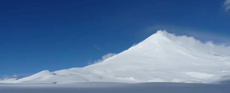 Volcán Llaima, Las Araucarias