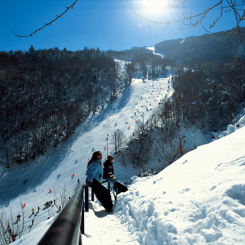Above Snow Board Cup, Resort Mavrovo