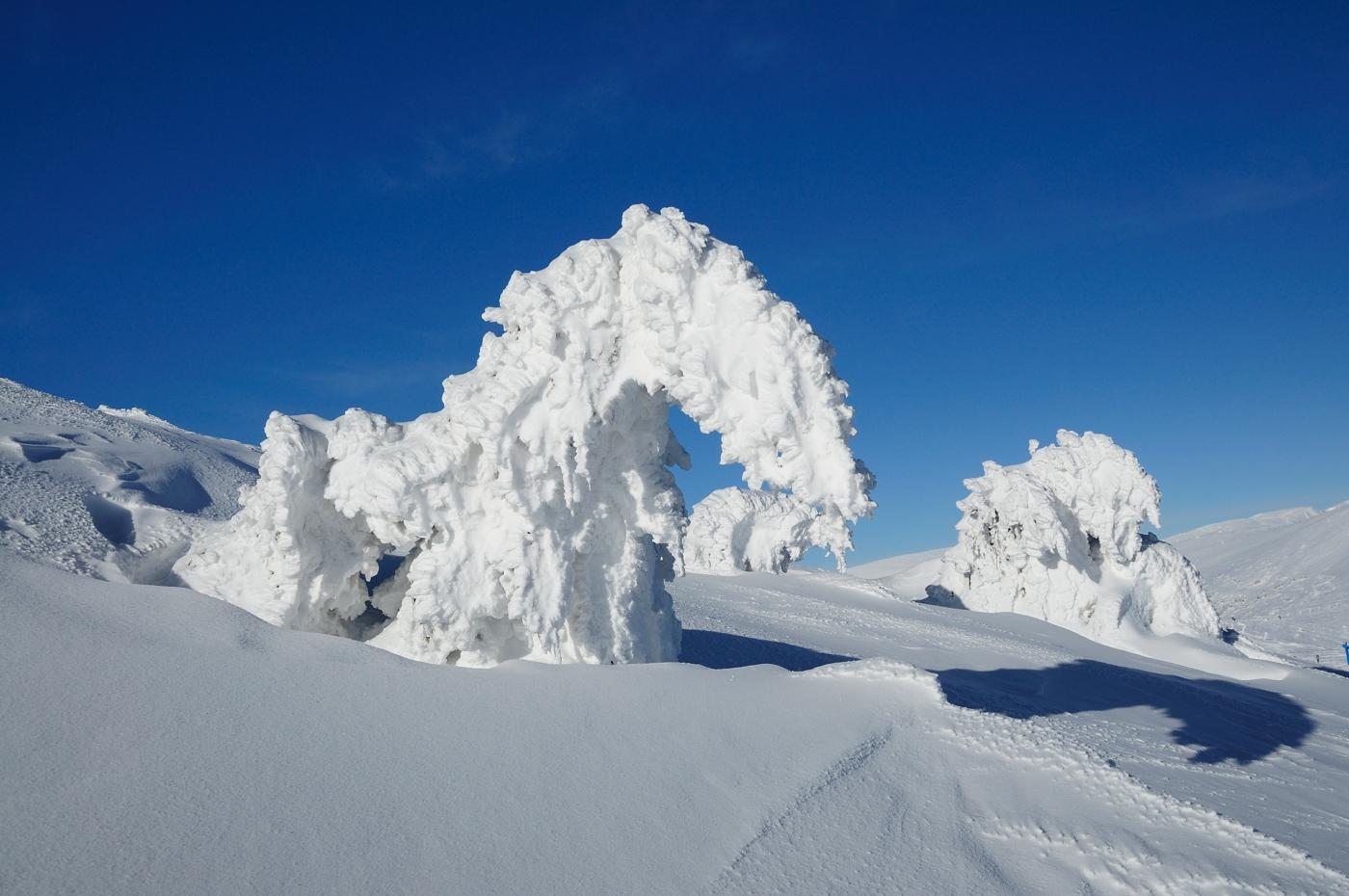 Snow Guard, Drahobrat