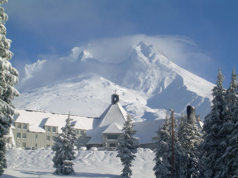 Timberline snow