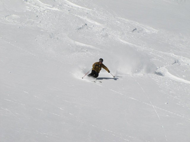 Untracked Powder Bliss!, Big Red Cats