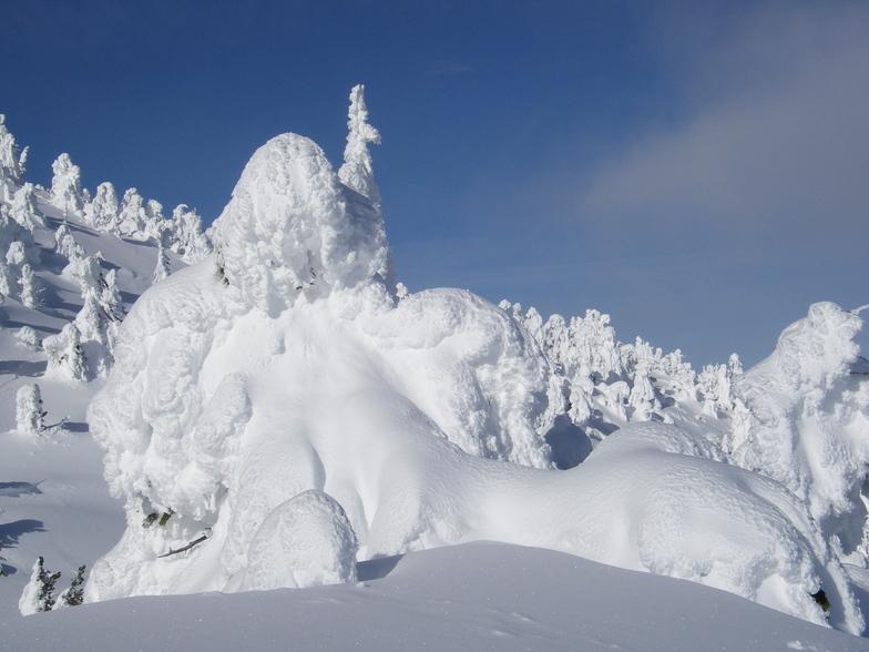Snow Ghosts, Mt Baldy Ski Area