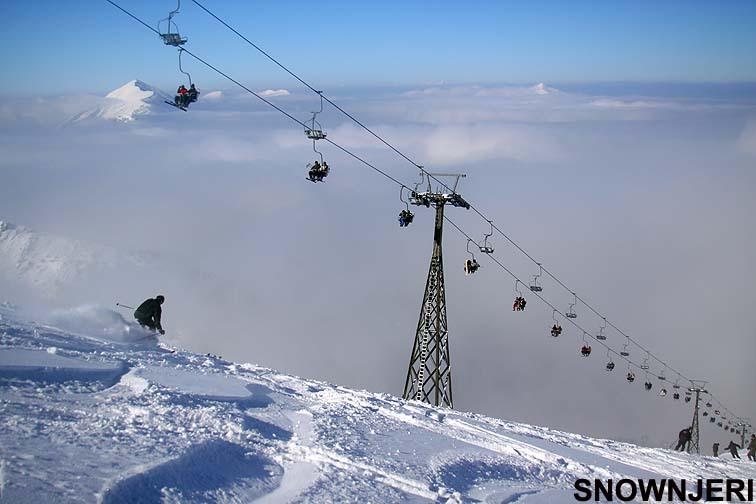 Happy on fresh snow, Brezovica