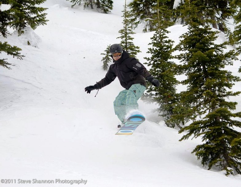 Leaping into the powder at Big Red Cats