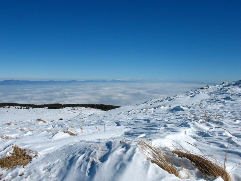 sea of clouds, Vitosha