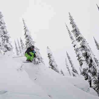 Revelstoke Ski Jumper, Revelstoke Mountain Resort
