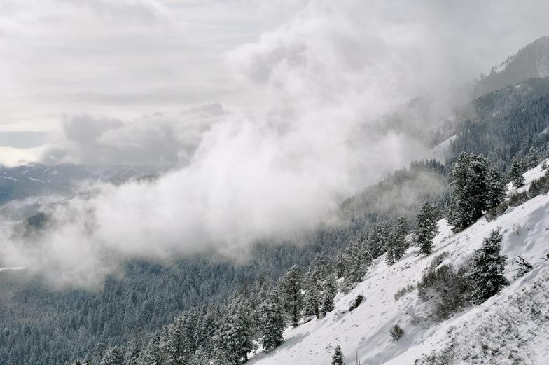 JH Gondola, Jackson Hole