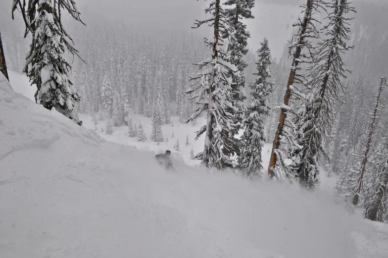 Powder, Mt Hood Meadows