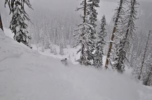 Powder, Mt Hood Meadows photo