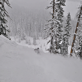 Powder, Mt Hood Meadows