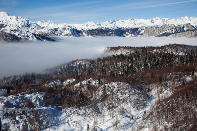Vogel, Slovenia
