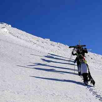 Pinguin hikers, Brezovica