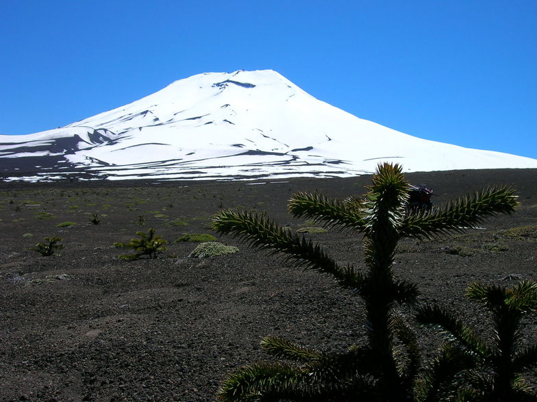 Volcan Lonquimay Oct 2005 (Chile), Villarrica-Pucon