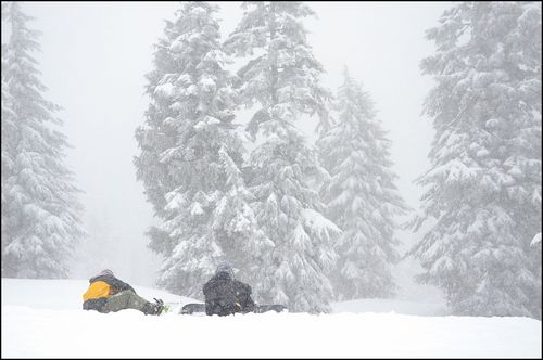 Mt Seymour  Resort Guide
