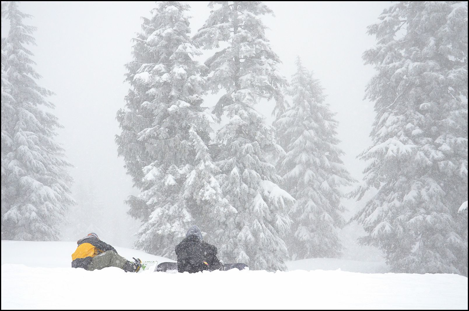 Mount Seymour BC, Snow, Mt Seymour