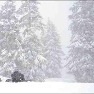 Mount Seymour BC, Snow