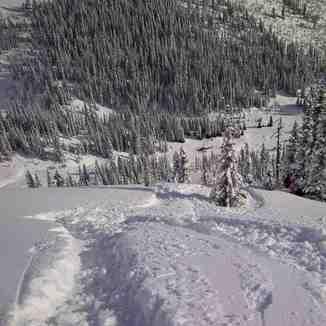 Sexy steep meadows, Great Canadian Heli-Skiing