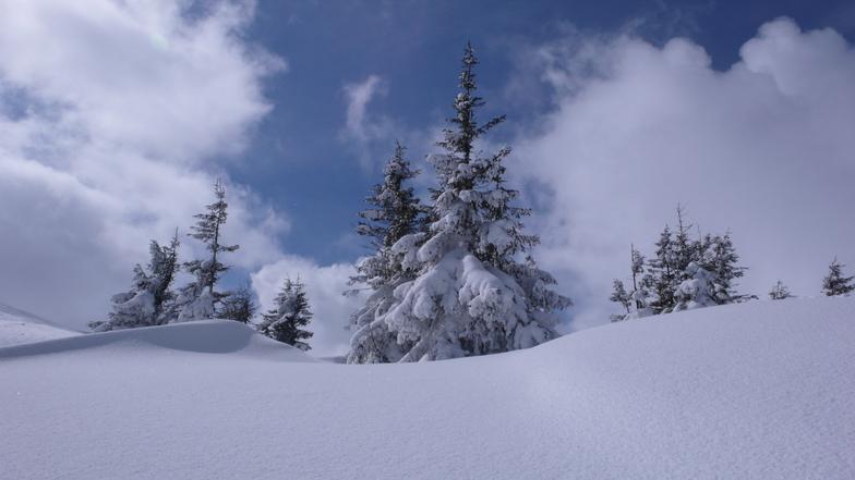 snow days...., Drahobrat