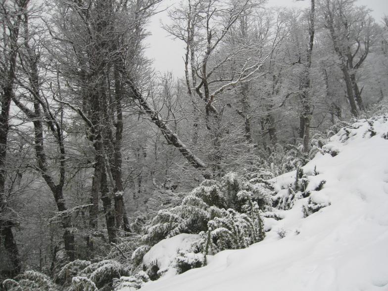 Cerro Bayo - Villa la Angostura