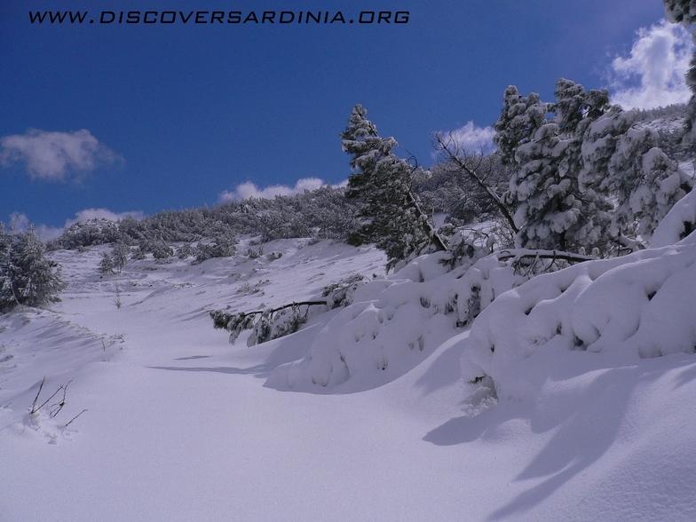 Bruncu Spina snow