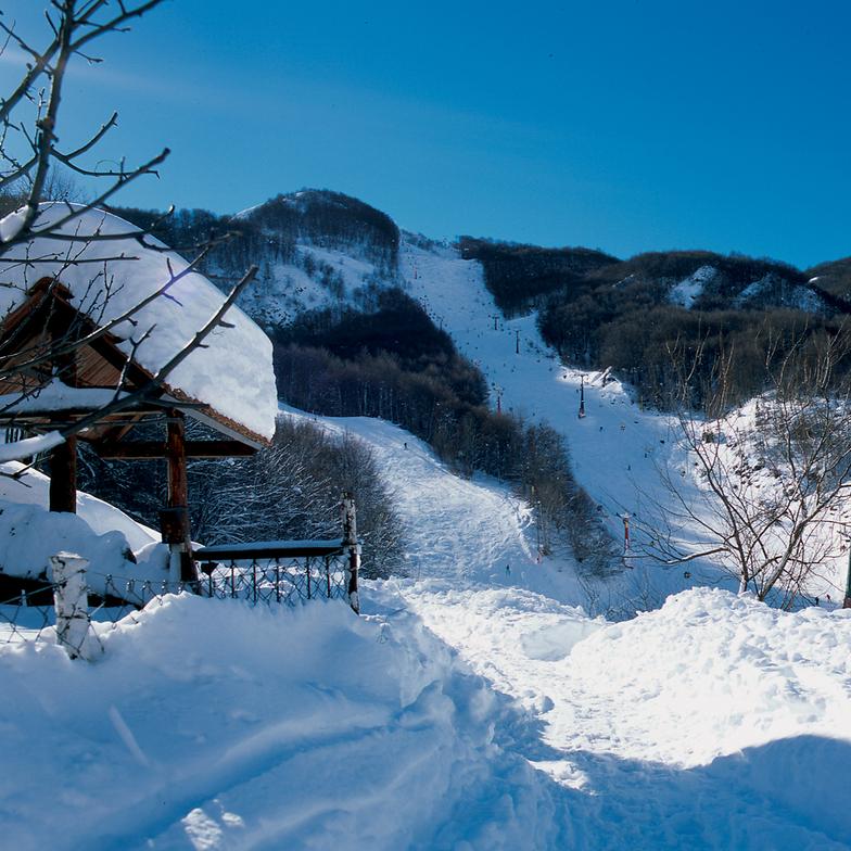 Neighbor's View, Resort Mavrovo