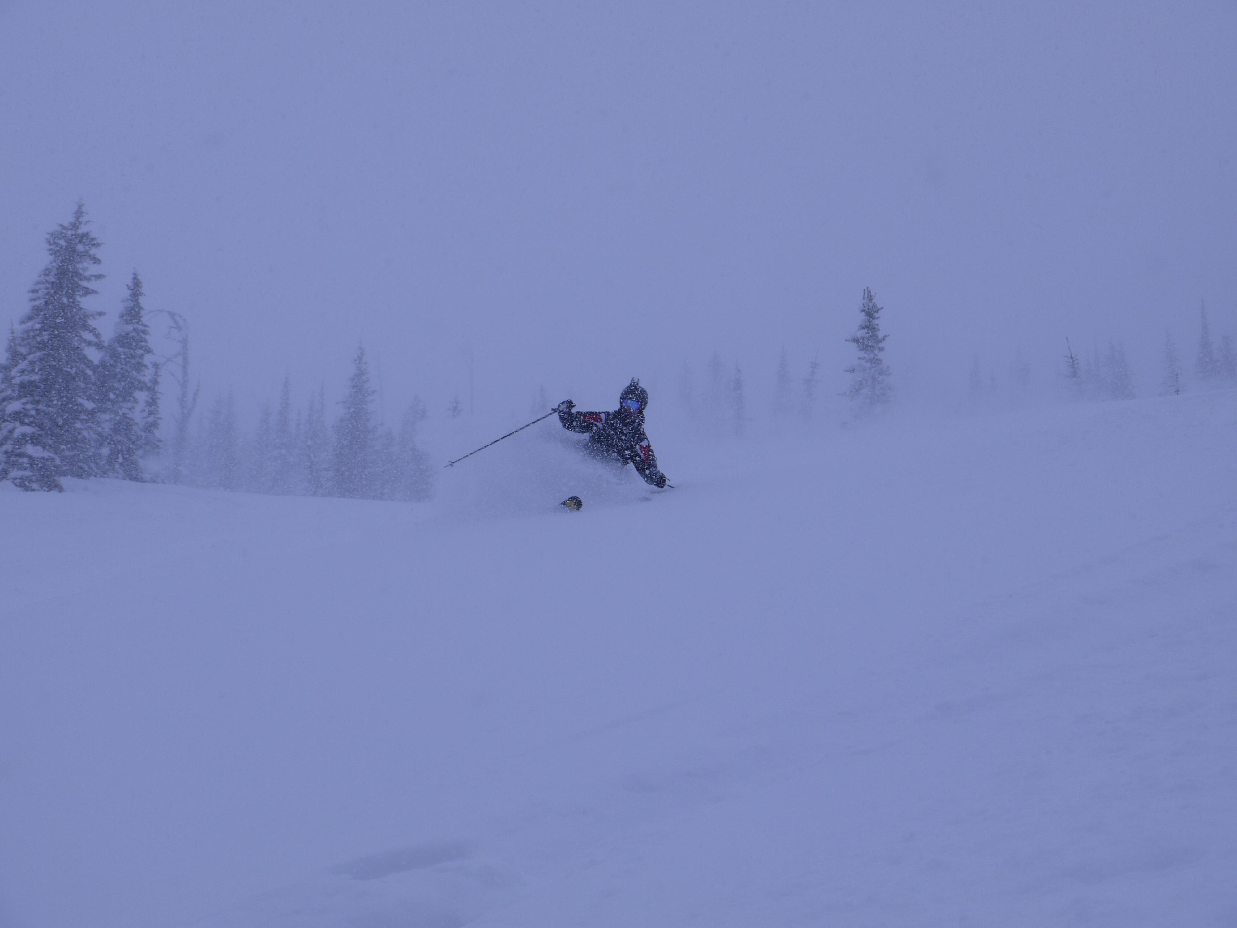 Richard skiing 60cm of fresh!!!, Castle Mountain Resort