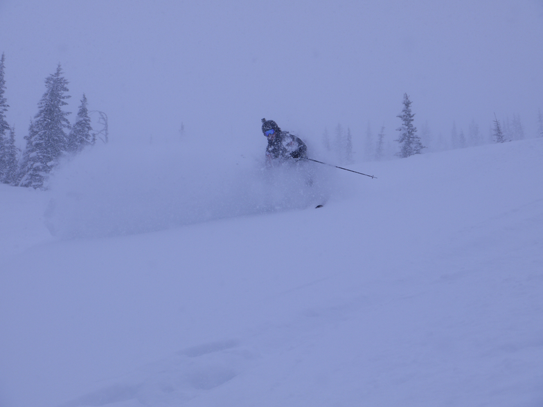 Powder dreams, Castle Mountain Resort